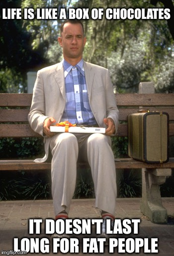 Hook me up |  LIFE IS LIKE A BOX OF CHOCOLATES; IT DOESN'T LAST LONG FOR FAT PEOPLE | image tagged in memes,forest gump | made w/ Imgflip meme maker