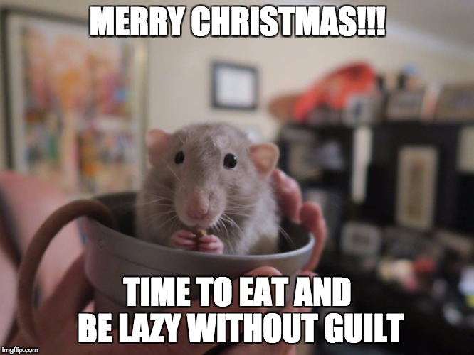 Cosmo, the Christmas Rat | MERRY CHRISTMAS!!! TIME TO EAT AND BE LAZY WITHOUT GUILT | image tagged in christmas | made w/ Imgflip meme maker