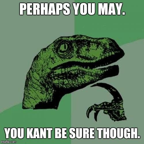 Philosoraptor Meme | PERHAPS YOU MAY. YOU KANT BE SURE THOUGH. | image tagged in memes,philosoraptor | made w/ Imgflip meme maker