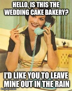 lady on the phone | HELLO, IS THIS THE WEDDING CAKE BAKERY? I'D LIKE YOU TO LEAVE MINE OUT IN THE RAIN | image tagged in lady on the phone | made w/ Imgflip meme maker