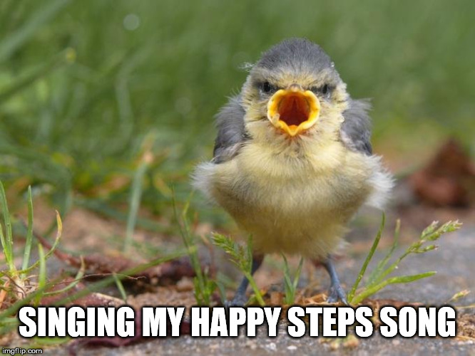 SINGING MY HAPPY STEPS SONG | made w/ Imgflip meme maker