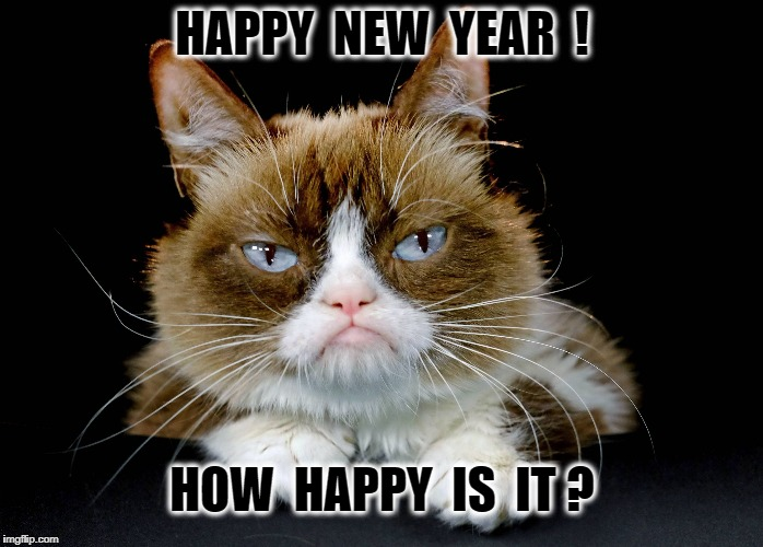 HAPPY  NEW  YEAR  ! HOW  HAPPY  IS  IT ? | image tagged in happy new year | made w/ Imgflip meme maker