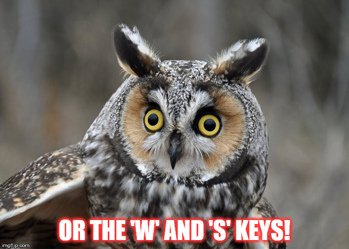 OR THE 'W' AND 'S' KEYS! | made w/ Imgflip meme maker
