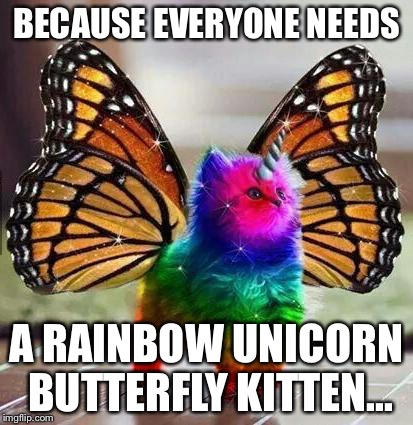 Rainbow unicorn butterfly kitten | BECAUSE EVERYONE NEEDS A RAINBOW UNICORN BUTTERFLY KITTEN... | image tagged in rainbow unicorn butterfly kitten | made w/ Imgflip meme maker