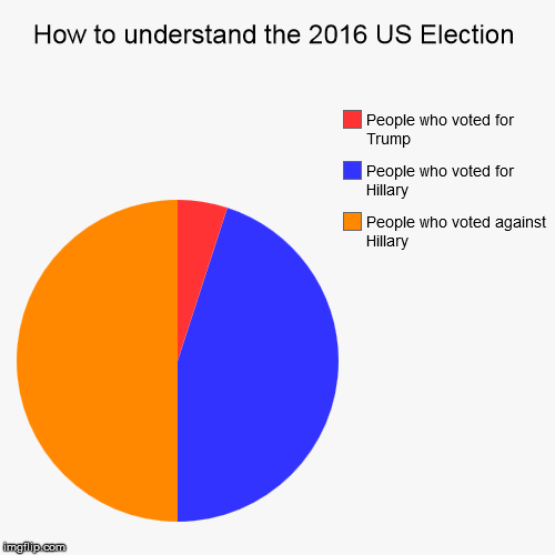 How to understand the 2016 US Election | People who voted against Hillary, People who voted for Hillary, People who voted for Trump | image tagged in funny,pie charts | made w/ Imgflip pie chart maker