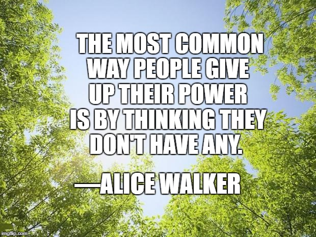 sunshine trees | THE MOST COMMON WAY PEOPLE GIVE UP THEIR POWER IS BY THINKING THEY DON'T HAVE ANY. —ALICE WALKER | image tagged in sunshine trees | made w/ Imgflip meme maker