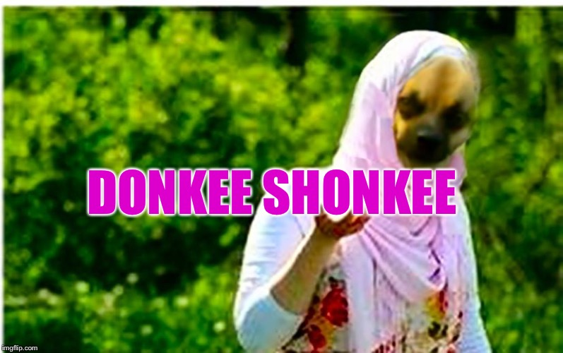 DONKEE SHONKEE | image tagged in arabey dinkey | made w/ Imgflip meme maker