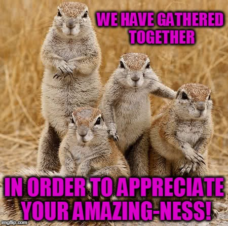 WE HAVE GATHERED TOGETHER IN ORDER TO APPRECIATE YOUR AMAZING-NESS! | image tagged in world animal day 2015 | made w/ Imgflip meme maker