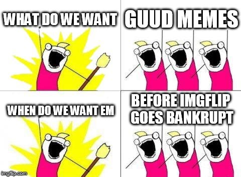 What Do We Want Meme | WHAT DO WE WANT GUUD MEMES WHEN DO WE WANT EM BEFORE IMGFLIP GOES BANKRUPT | image tagged in memes,what do we want | made w/ Imgflip meme maker