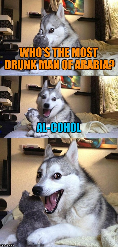 My country is full of Al-Cohols | WHO'S THE MOST DRUNK MAN OF ARABIA? AL-COHOL | image tagged in memes,bad pun dog,arabic,powermetalhead,funny,alcohol | made w/ Imgflip meme maker