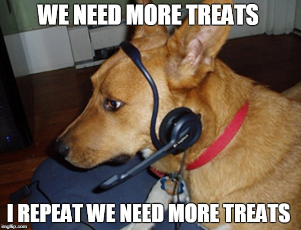 If doggos were in control | WE NEED MORE TREATS I REPEAT WE NEED MORE TREATS | image tagged in doggo,treats | made w/ Imgflip meme maker