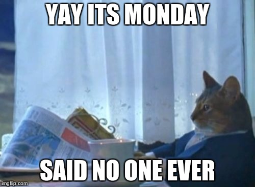 I Should Buy A Boat Cat Meme | YAY ITS MONDAY SAID NO ONE EVER | image tagged in memes,i should buy a boat cat | made w/ Imgflip meme maker