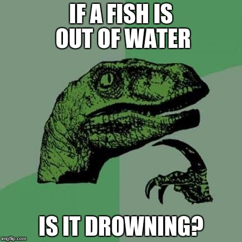 A question for the ages | IF A FISH IS OUT OF WATER IS IT DROWNING? | image tagged in memes,philosoraptor | made w/ Imgflip meme maker