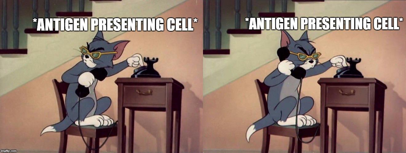 Tom Jerry Dialing Phone Odobesti Meme Generator Imgflip