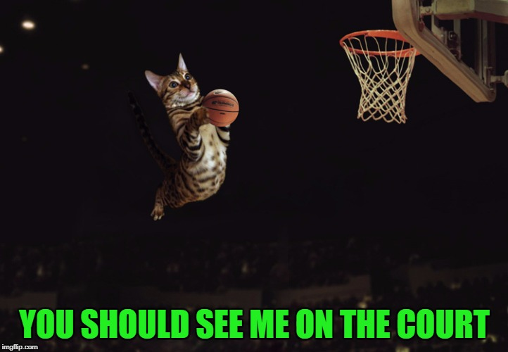 YOU SHOULD SEE ME ON THE COURT | made w/ Imgflip meme maker