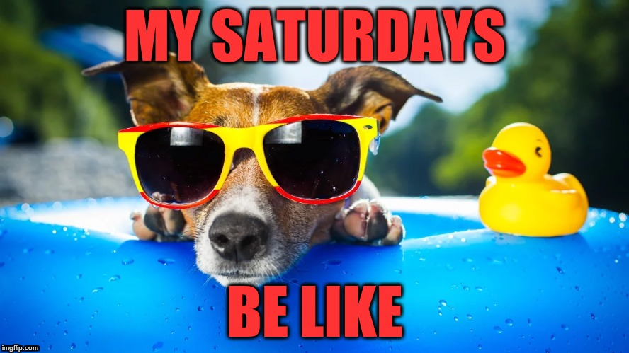 Saturdyas | MY SATURDAYS BE LIKE | image tagged in weekend | made w/ Imgflip meme maker