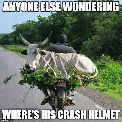 ANYONE ELSE WONDERING WHERE'S HIS CRASH HELMET | image tagged in where | made w/ Imgflip meme maker