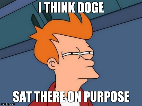 Futurama Fry Meme | I THINK DOGE SAT THERE ON PURPOSE | image tagged in memes,futurama fry | made w/ Imgflip meme maker