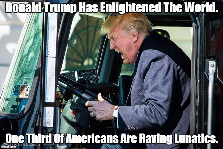 Donald Trump Has Enlightened The World. One Third Of Americans Are Raving Lunatics. | made w/ Imgflip meme maker
