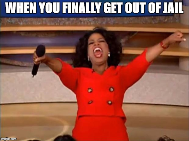 Oprah You Get A Meme | WHEN YOU FINALLY GET OUT OF JAIL | image tagged in memes,oprah you get a | made w/ Imgflip meme maker