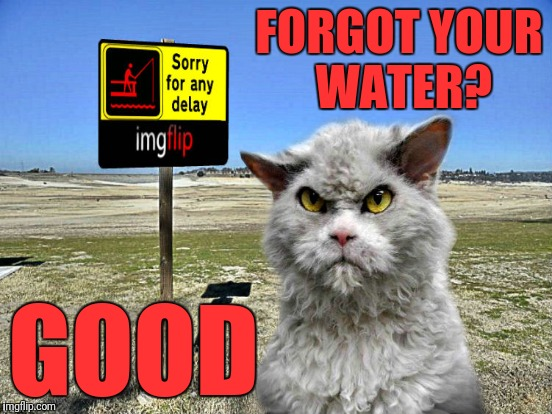 FORGOT YOUR WATER? GOOD | made w/ Imgflip meme maker