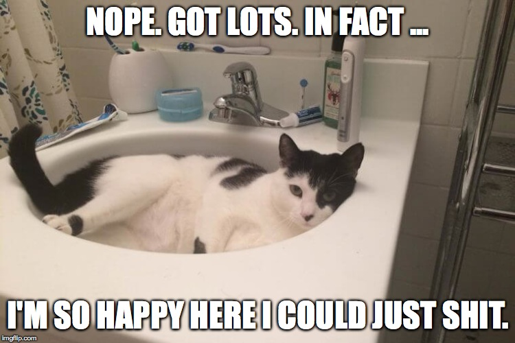 NOPE. GOT LOTS. IN FACT ... I'M SO HAPPY HERE I COULD JUST SHIT. | made w/ Imgflip meme maker
