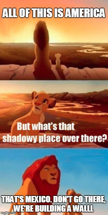 Simba Shadowy Place Meme | ALL OF THIS IS AMERICA THAT'S MEXICO. DON'T GO THERE, WE'RE BUILDING A WALLL | image tagged in memes,simba shadowy place | made w/ Imgflip meme maker