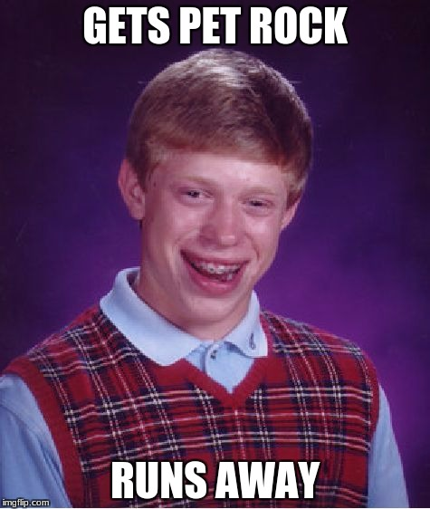 Bad Luck Brian Meme | GETS PET ROCK RUNS AWAY | image tagged in memes,bad luck brian | made w/ Imgflip meme maker
