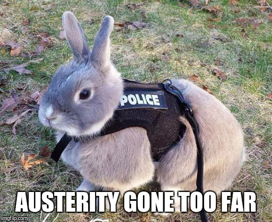 TORY AUSTERITY GONE TOO FAR | AUSTERITY GONE TOO FAR | image tagged in funny meme,conservatives,austerity,budget cuts,best meme,animal meme | made w/ Imgflip meme maker