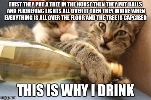 FIRST THEY PUT A TREE IN THE HOUSE THEN THEY PUT BALLS AND FLICKERING LIGHTS ALL OVER IT THEN THEY WHINE WHEN EVERYTHING IS ALL OVER THE FLO | image tagged in why i drink | made w/ Imgflip meme maker