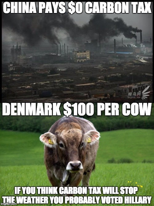 carbon tax fraud | CHINA PAYS $0 CARBON TAX DENMARK $100 PER COW IF YOU THINK CARBON TAX WILL STOP THE WEATHER YOU PROBABLY VOTED HILLARY | image tagged in global warming,hillary clinton | made w/ Imgflip meme maker