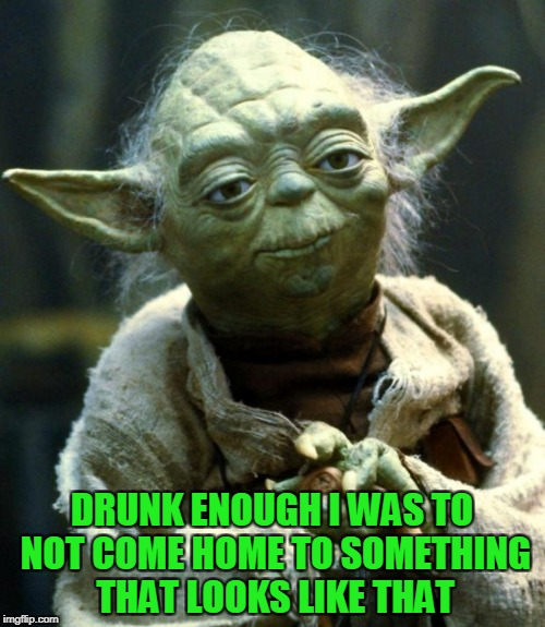Star Wars Yoda Meme | DRUNK ENOUGH I WAS TO NOT COME HOME TO SOMETHING THAT LOOKS LIKE THAT | image tagged in memes,star wars yoda | made w/ Imgflip meme maker