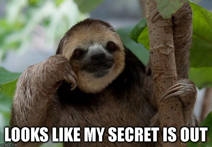 Personality Sloth | LOOKS LIKE MY SECRET IS OUT | image tagged in personality sloth | made w/ Imgflip meme maker