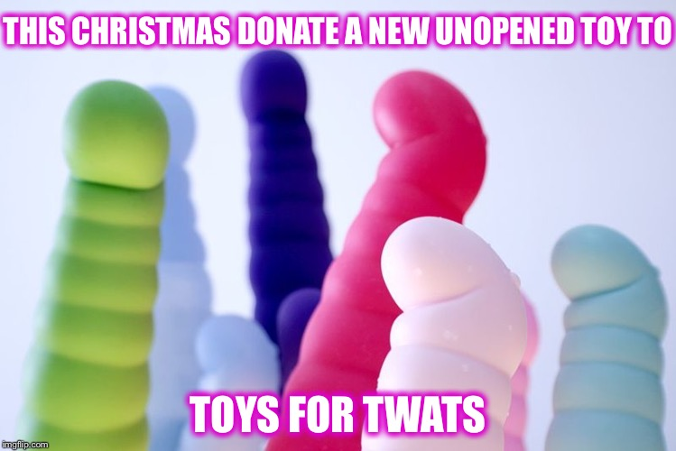 Toys for Tots? | THIS CHRISTMAS DONATE A NEW UNOPENED TOY TO TOYS FOR TWATS | image tagged in vibrators,toy story,christmas,toys for tots | made w/ Imgflip meme maker