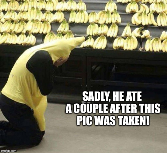 Not the babies | SADLY, HE ATE A COUPLE AFTER THIS PIC WAS TAKEN! | image tagged in banana | made w/ Imgflip meme maker