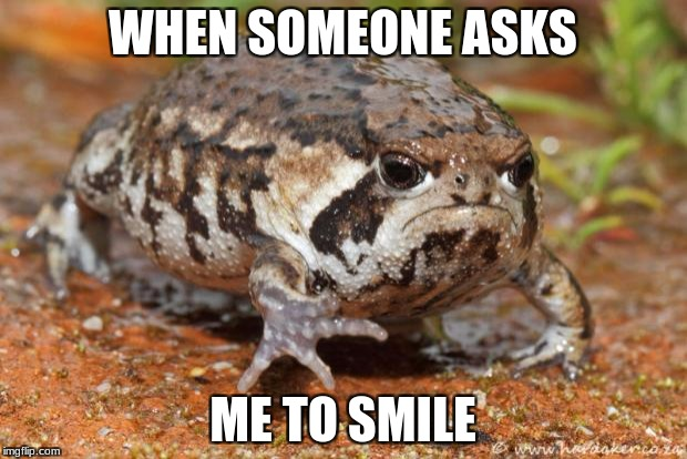 Grumpy Toad Meme | WHEN SOMEONE ASKS ME TO SMILE | image tagged in memes,grumpy toad | made w/ Imgflip meme maker