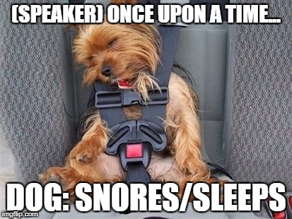sleepy | (SPEAKER) ONCE UPON A TIME... DOG: SNORES/SLEEPS | image tagged in cool story bro | made w/ Imgflip meme maker