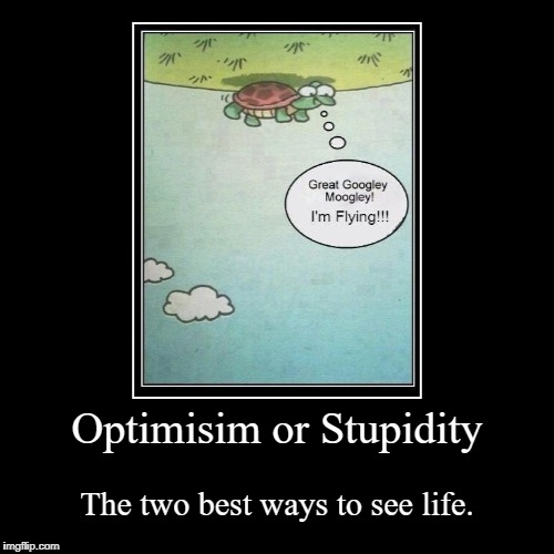 Optimisim or Stupidity | The two best ways to see life. | image tagged in funny,demotivationals,flying turtle,optimist,flying,optimism | made w/ Imgflip demotivational maker