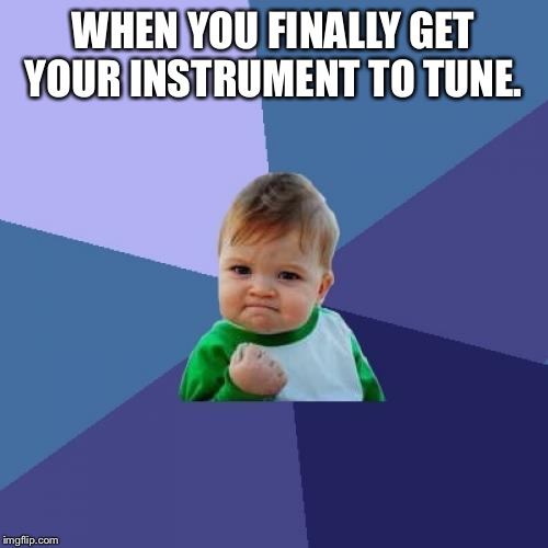 Success Kid Meme | WHEN YOU FINALLY GET YOUR INSTRUMENT TO TUNE. | image tagged in memes,success kid | made w/ Imgflip meme maker