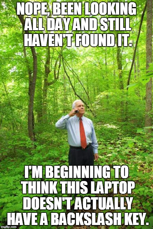 When You're Using Your New Laptop and Can't Find a Key... | NOPE, BEEN LOOKING ALL DAY AND STILL HAVEN'T FOUND IT. I'M BEGINNING TO THINK THIS LAPTOP DOESN'T ACTUALLY HAVE A BACKSLASH KEY. | image tagged in lost in the woods | made w/ Imgflip meme maker
