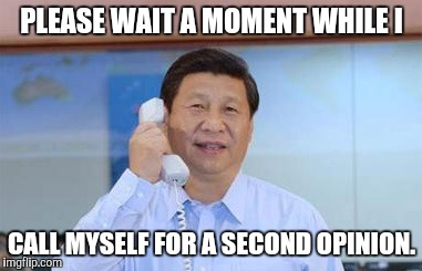 xi jinping | PLEASE WAIT A MOMENT WHILE I CALL MYSELF FOR A SECOND OPINION. | image tagged in xi jinping | made w/ Imgflip meme maker