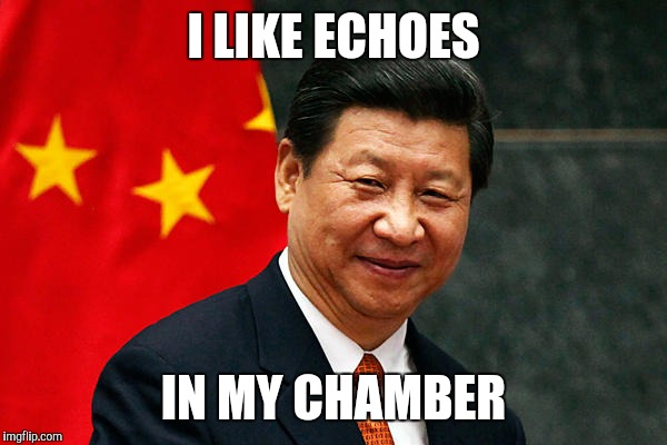 I LIKE ECHOES IN MY CHAMBER | image tagged in xi jinping | made w/ Imgflip meme maker