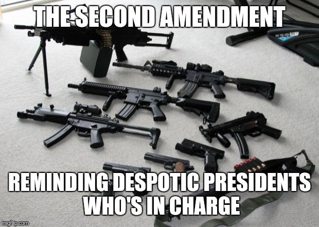guns | THE SECOND AMENDMENT REMINDING DESPOTIC PRESIDENTS WHO'S IN CHARGE | image tagged in guns | made w/ Imgflip meme maker