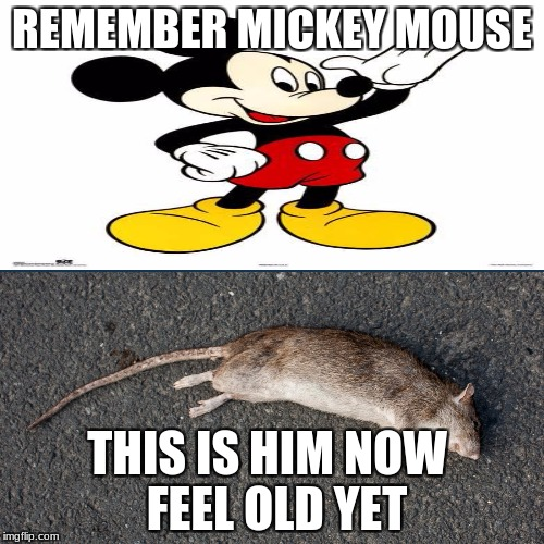 Feel old yet | REMEMBER MICKEY MOUSE THIS IS HIM NOW FEEL OLD YET | image tagged in feel old yet | made w/ Imgflip meme maker