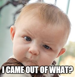 Skeptical Baby Meme | I CAME OUT OF WHAT? | image tagged in memes,skeptical baby | made w/ Imgflip meme maker