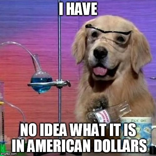 I Have No Idea What I Am Doing Dog | I HAVE NO IDEA WHAT IT IS IN AMERICAN DOLLARS | image tagged in memes,i have no idea what i am doing dog | made w/ Imgflip meme maker