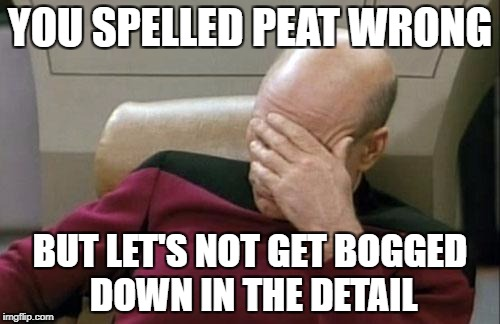 Captain Picard Facepalm Meme | YOU SPELLED PEAT WRONG BUT LET'S NOT GET BOGGED DOWN IN THE DETAIL | image tagged in memes,captain picard facepalm | made w/ Imgflip meme maker