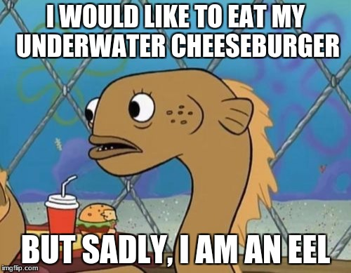 Sadly I Am Only An Eel |  I WOULD LIKE TO EAT MY UNDERWATER CHEESEBURGER; BUT SADLY, I AM AN EEL | image tagged in memes,sadly i am only an eel | made w/ Imgflip meme maker