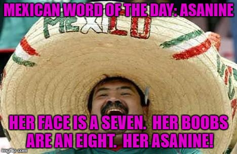 Juan Mexican Man | MEXICAN WORD OF THE DAY: ASANINE HER FACE IS A SEVEN.  HER BOOBS ARE AN EIGHT.  HER ASANINE! | image tagged in juan mexican man | made w/ Imgflip meme maker