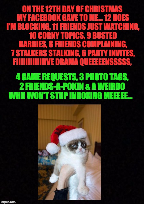 12 days of facebook | ON THE 12TH DAY OF CHRISTMAS MY FACEBOOK GAVE TO ME… 12 HOES I'M BLOCKING, 11 FRIENDS JUST WATCHING, 10 CORNY TOPICS, 9 BUSTED BARBIES, 8 FR | image tagged in blank,xmas | made w/ Imgflip meme maker